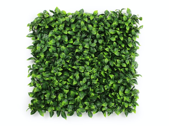 Artificial Hedge Wall Buxus Green 3m²