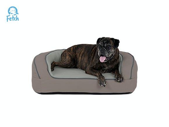 Fetch Orthopedic Memory Foam Sofa Dog Bed - MED