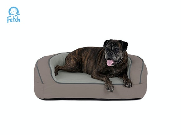 Fetch Orthopedic Memory Foam Sofa Dog Bed - MED