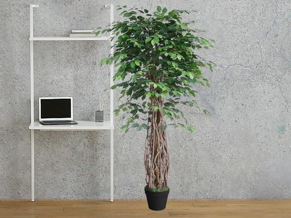 Artificial Tree Weeping Fig Ficus Vine 180cm