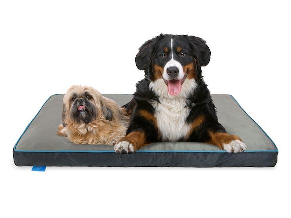 Fetch Orthopedic Memory Foam Dog Bed 12cm Thick - XXL