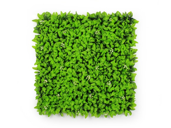 Artificial Hedge Wall Flowering Buxus 3m²