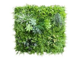 Artificial Green Wall Fern Mixed 1m²