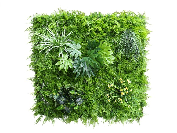 Artificial Green Wall Fern Mixed 1m²