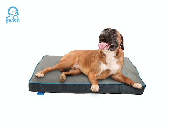 Fetch Orthopedic Memory Foam Dog Bed 12cm Thick - MED/LRG
