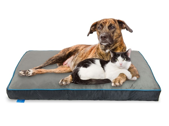 Fetch Orthopedic Memory Foam Dog Bed 12cm Thick - XLG