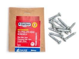 Galvanised Screws - Gauge 6 - 20mm (10 Pack)
