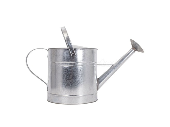 McGregor's Watering Can 10L Galvanised